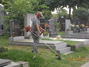 Zentralfriedhof  cemetery gardener trimming the  cemetery grass.