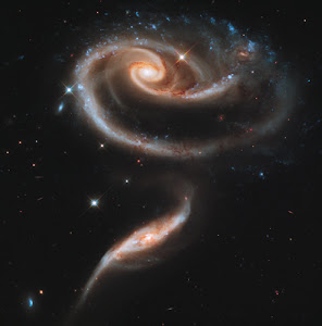 Rose made of two galaxies
