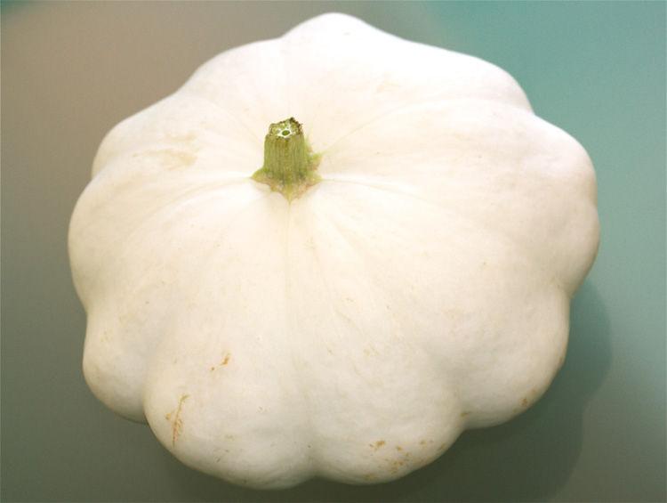 On se nourrit un nouveau l gume enchant s - Comment cuisiner un patisson blanc ...