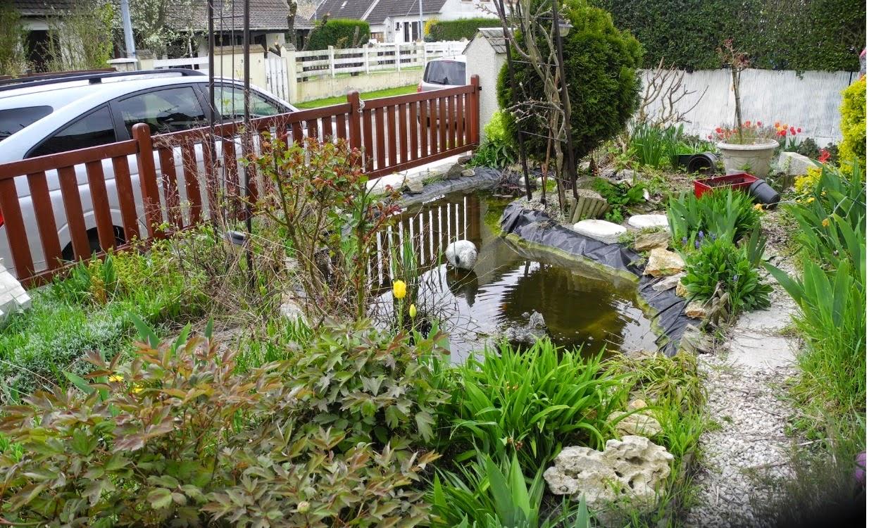 Bassin et terrasse dans un petit espace paysagiste val d for Espace chlorophylle