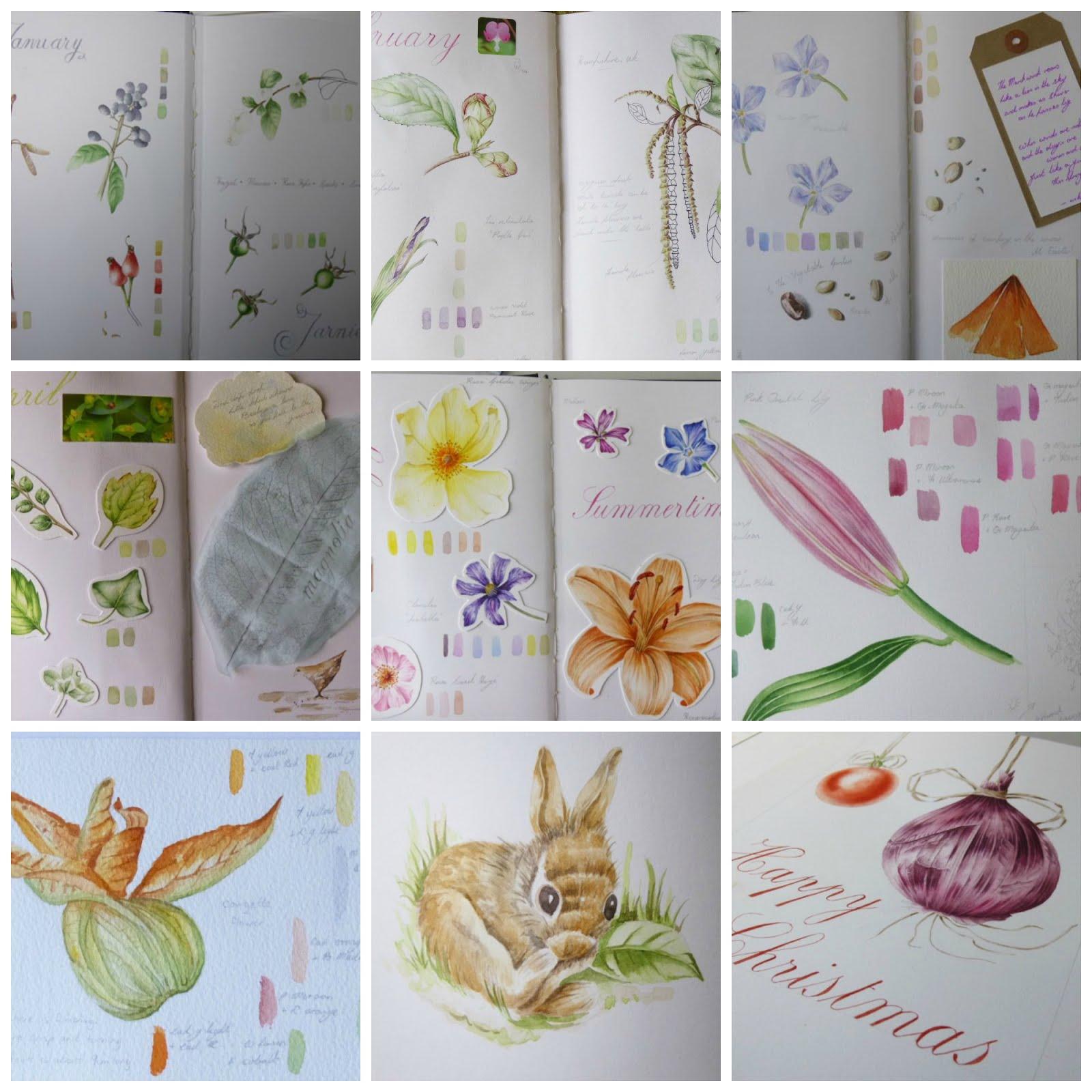 'The Botanical Year' Sketchbook Workshops