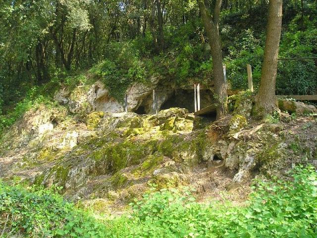 coves Serinyà