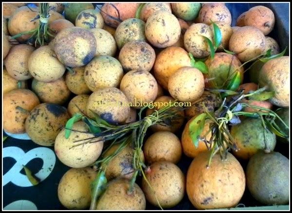 buah hutan