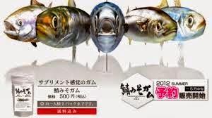 Permen Karet Rasa Ikan