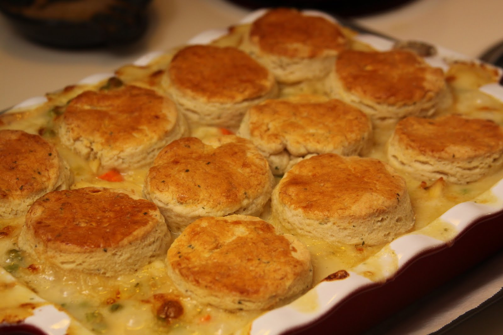 Chicken Stew with Biscuits | Moore Adventures