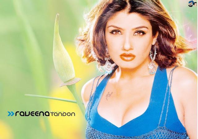Raveena Tandon HD Wallpaper