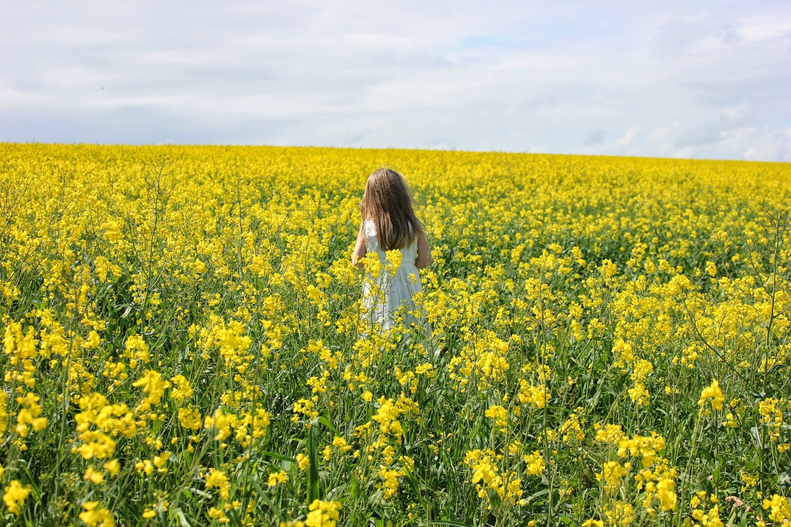 Girl in a golden field of sunshine