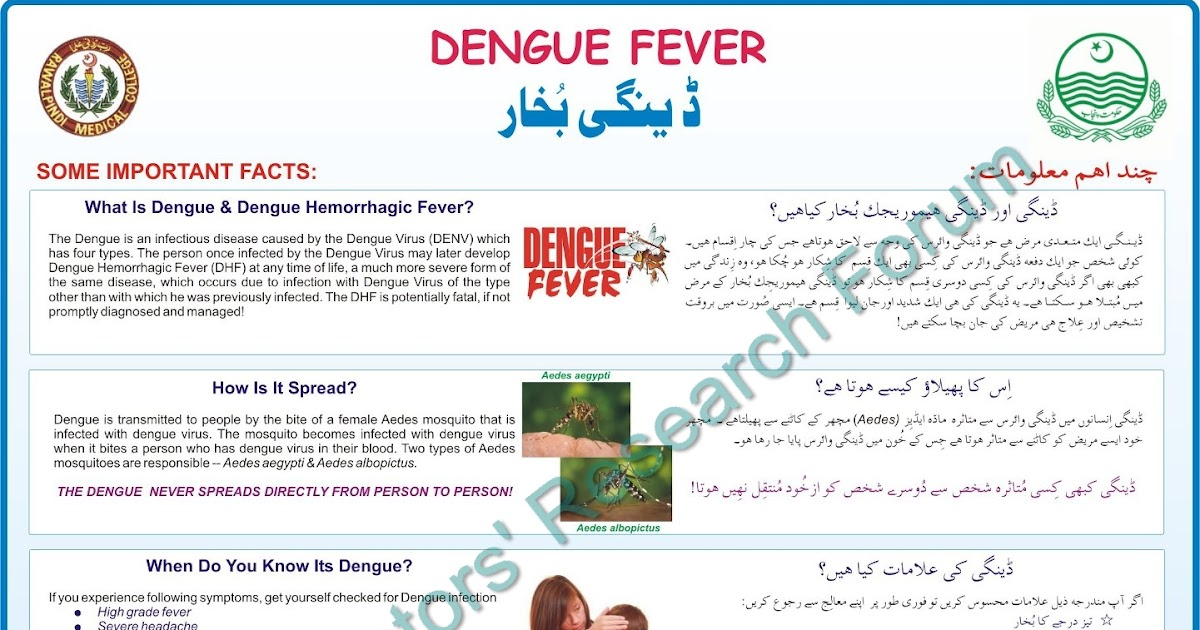 dengue hemorrhagic fever thesis