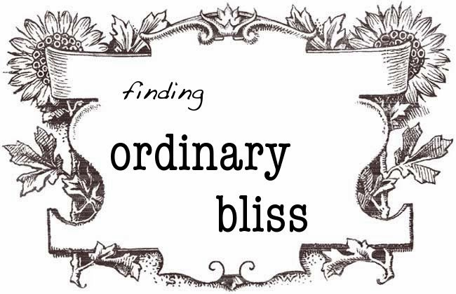 finding ordinary bliss