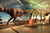 16 Museo Canadiense de la Naturaleza por los arquitectos KPMB