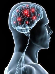 Google Keyword - cognitive function test oxford university scientists