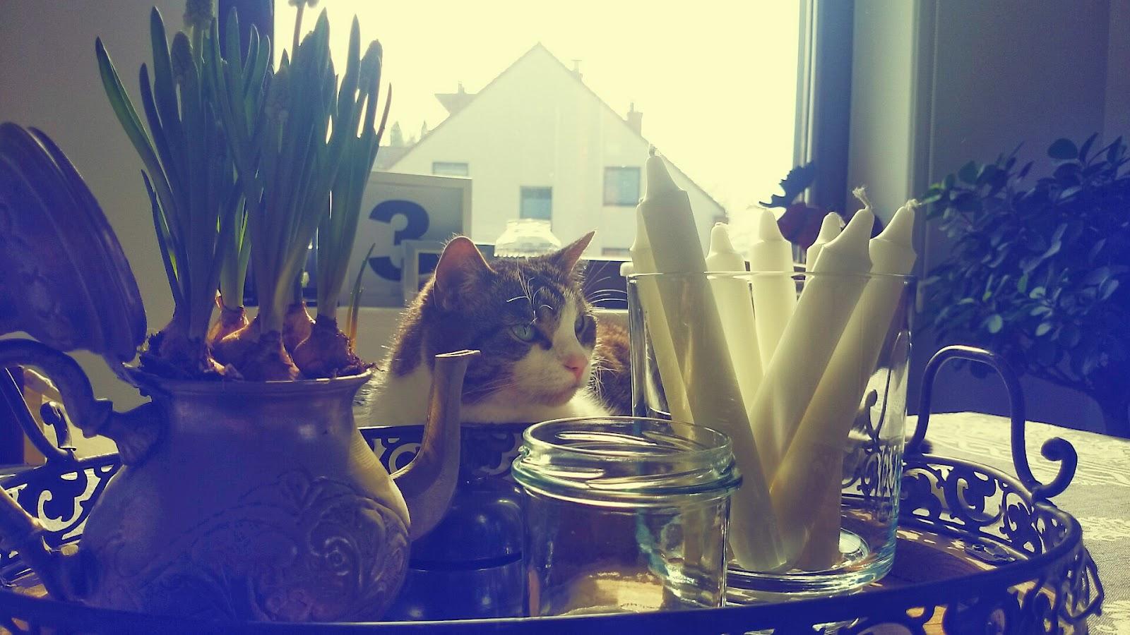 Dekoracje stołu, dzbanuszek antyk jako osłonka na kwiaty