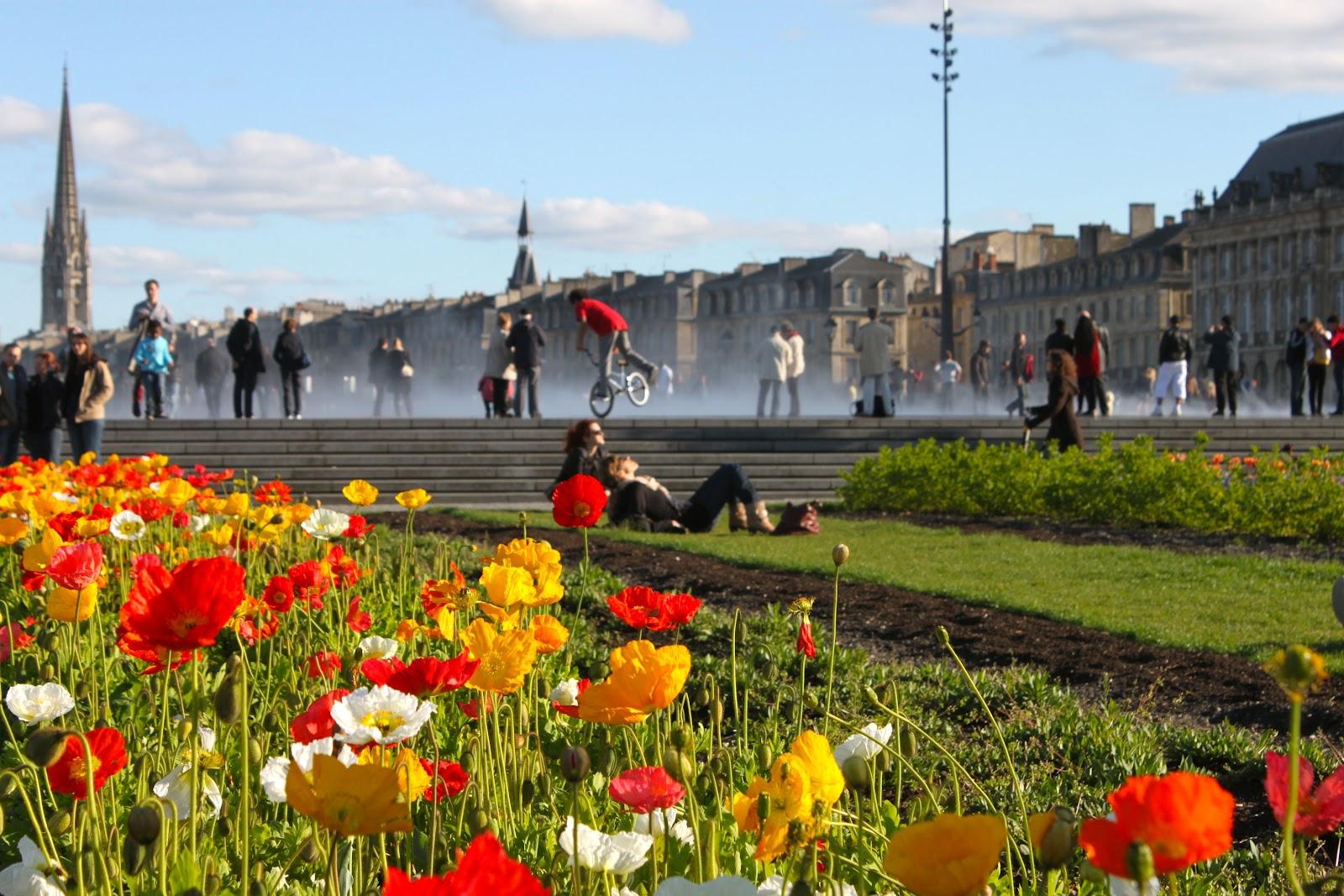 Quai de la garonne miroir d 39 eau bordeaux capturer l for Fleuriste le jardin des fleurs