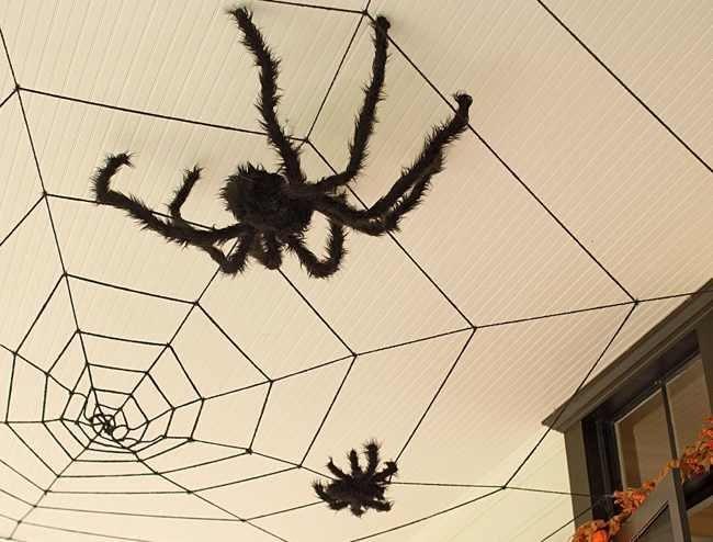 Halloween de terror en halloween coloca ara as en el techo - Decoracion de aranas ...