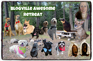 Blogville Awesome Retreat: June 10-12, 2016