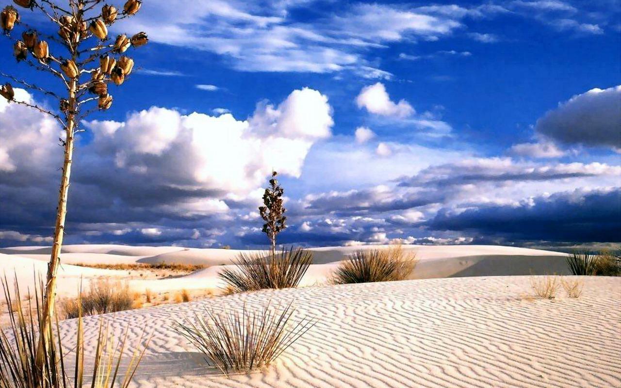 Desert Wallpaper Hd Wallpapers Widescreen Desktop