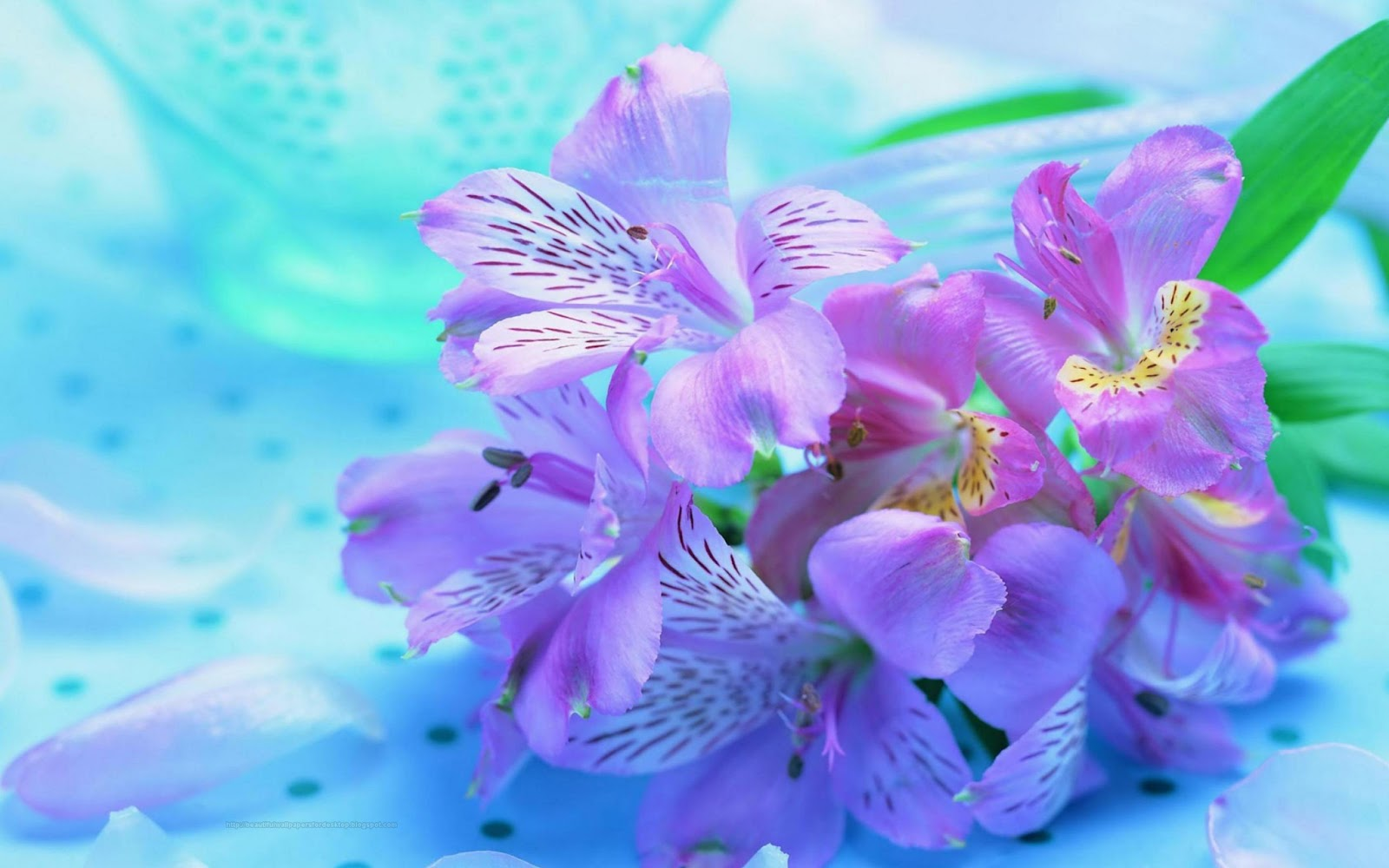 pretty purple flower wallpaper - photo #11