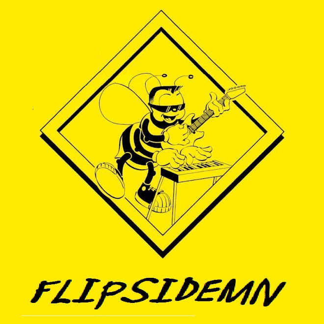 Flipsidemn
