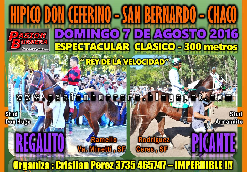 SAN BERNARDO - 7 DE AGOSTO - 300
