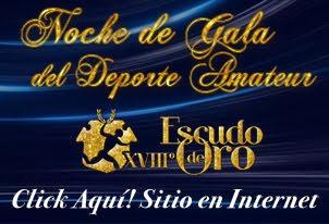 Noche de Gala 2014