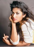 Amala, paul, latest, navel, saree, photos