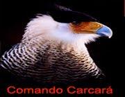 Comando Carcará. para preservar a natureza é preciso conhecê-la (Quer saber mais click na imagem)