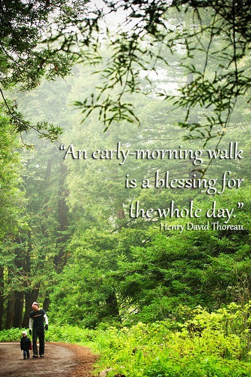 Inspirational Nature Quote - Henry David Thoreau