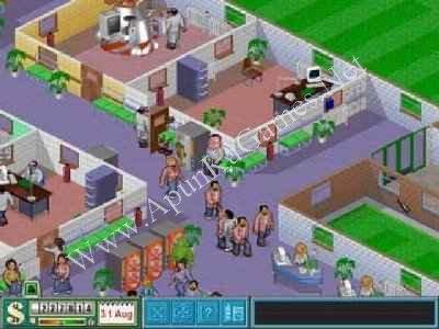 sim theme hospital  para pc