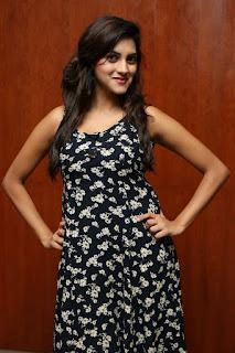 Sita Narayan Latest Pictures  (2).jpg