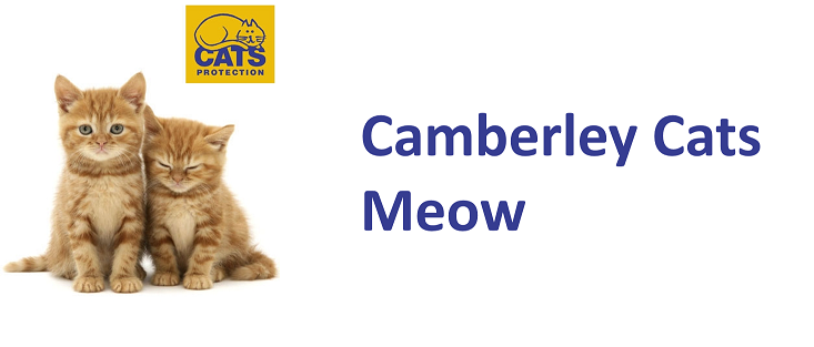 Camberley Cats Meow