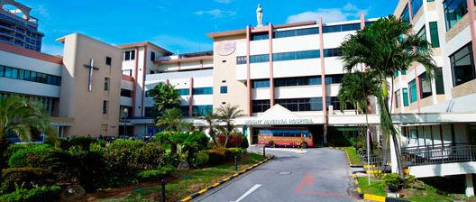 NursesVacancy.com: Mount Alvernia Hospital in Singapore ...