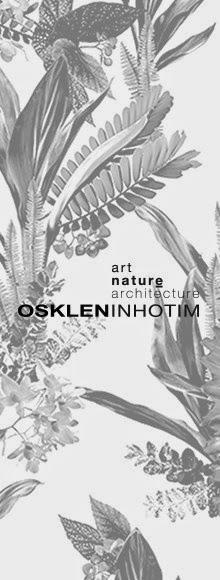 OSKLEN INHOTIM SS2015