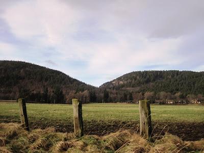 Deeside Walks: along the Deeside Way past Craigendarroch