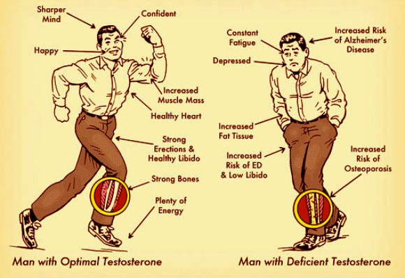 What Causes Low Testosterone Levels