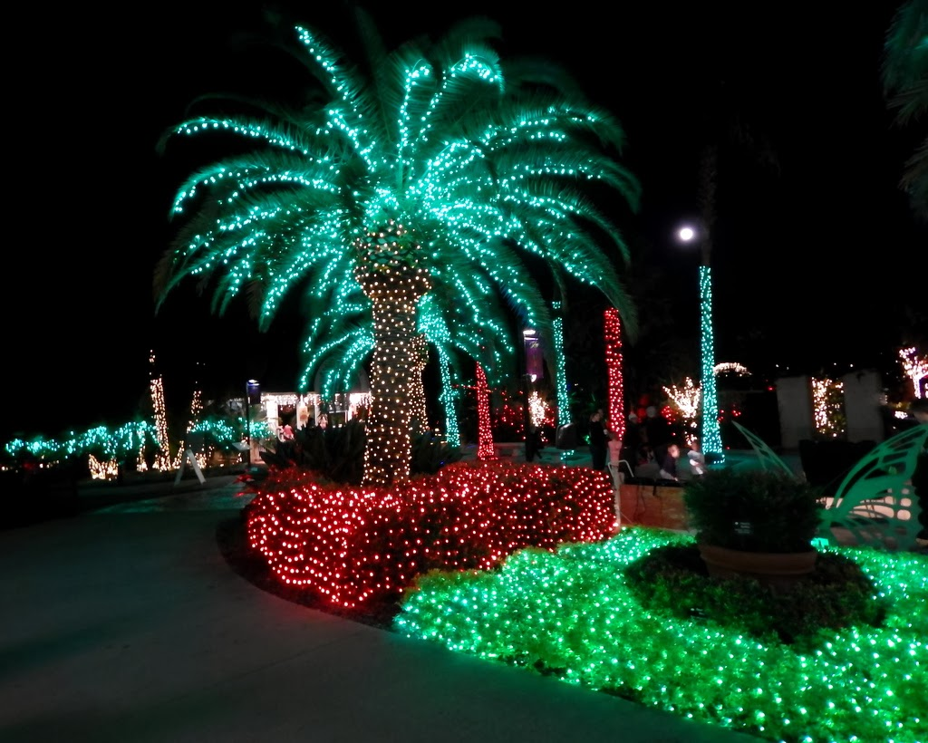 Swedish gals attic a galaxy of holiday lights in largo - Largo botanical gardens christmas lights ...