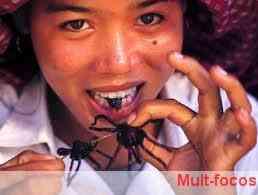 carne de insetos