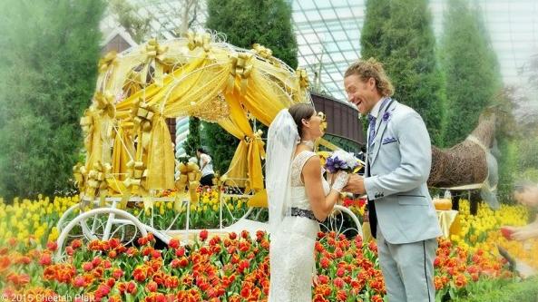 Menikah Sebanyak 24 Kali di Berbagai Negara
