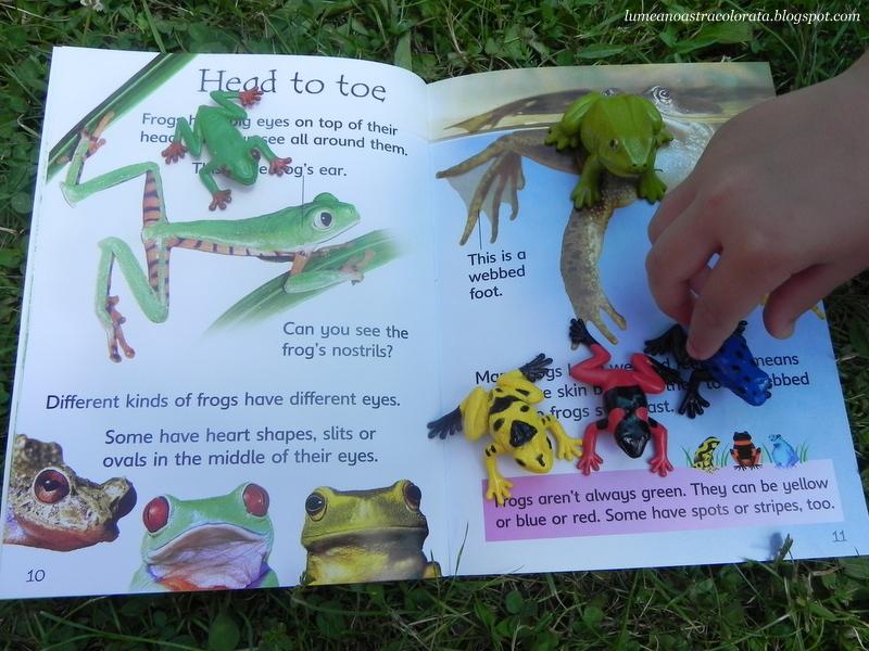 Tadpoles and Frogs, editura Usborne