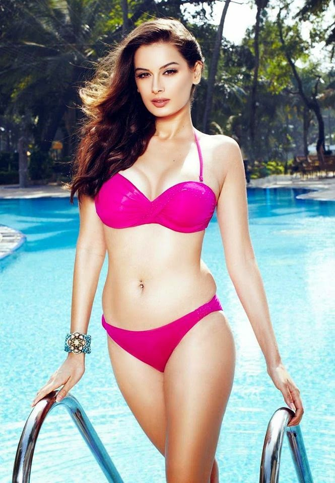 Evelyn Sharma Hot HD Wallpapers Free Download