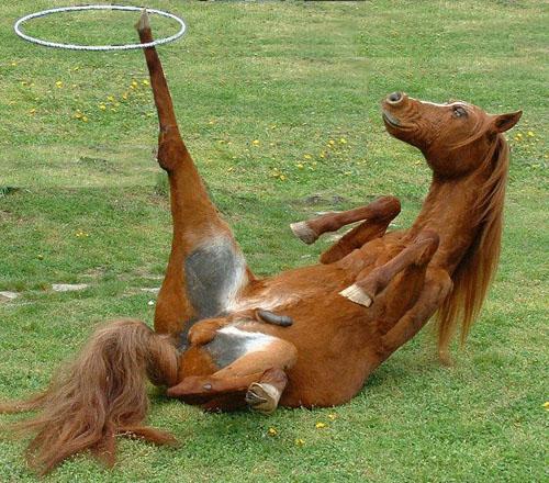 Don Horse S Lubes N Things Hula Hoop