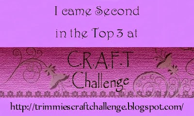 I WAS IN THE TOP 3 at TRIMMIES CRAFT CHALLENGE.