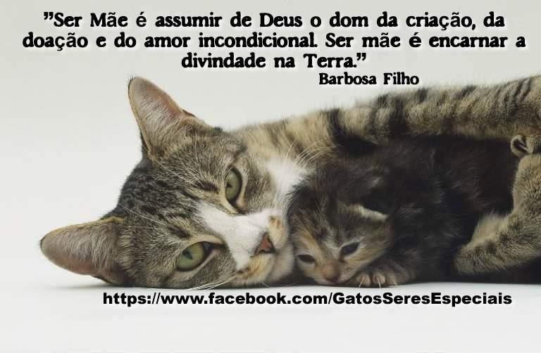 Animais Ame Os E Os Deixe Viver Barbosa Filho Frase