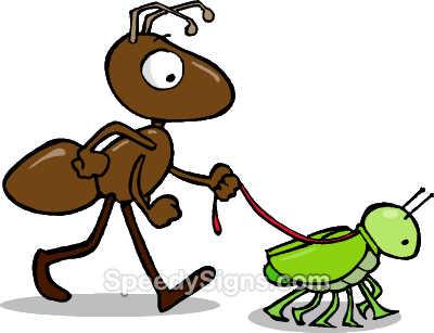 pulgón: simbiosis entre la hormiga y el pulgón