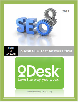 SEO Test Answers 2013