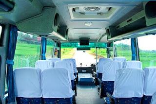 bus liburan murah