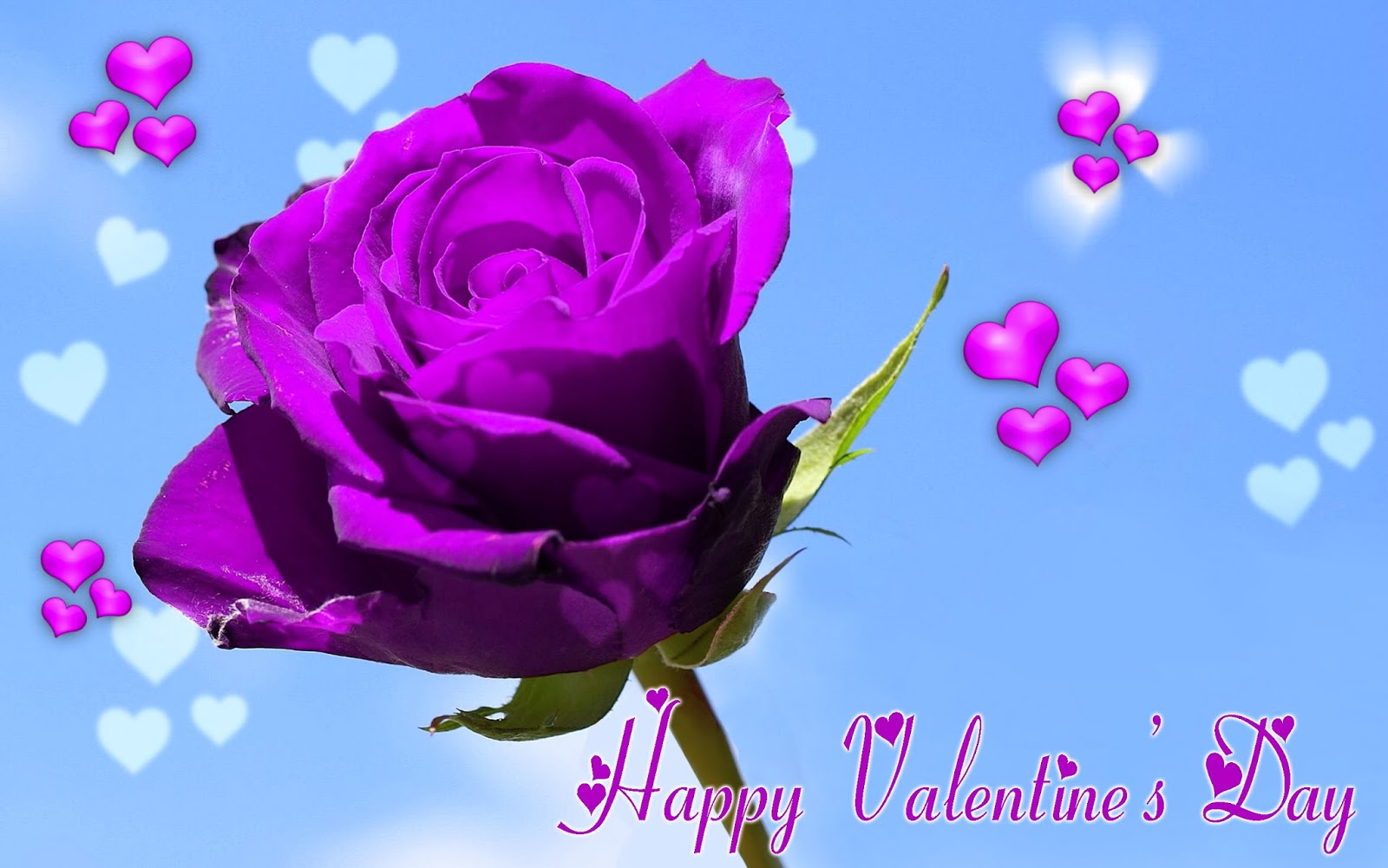 Happy-Valentines-Day-Wishes-Wallpapers-With-Flower-Image-HD-Wide