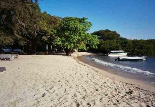 Gambar pesisir Pantai Bama di Jawa Timur yang mempesona