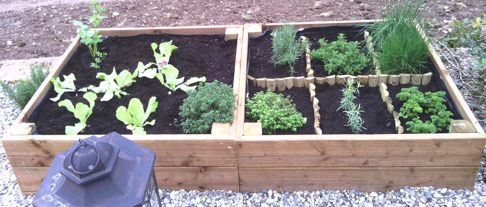 faire un jardin d herbes aromatiques latest images de fleurs de plantes aromatiques bio. Black Bedroom Furniture Sets. Home Design Ideas