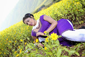 Hari priya photo shoot among yellow folwers-thumbnail-3
