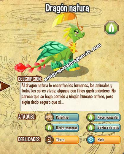 imagen de las caracteristicas del dragon natura